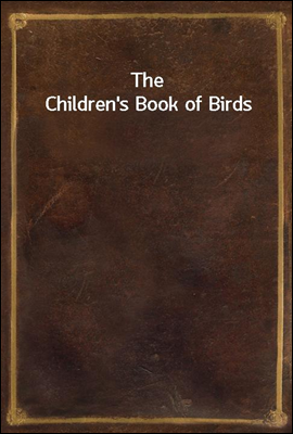 The Children's Book of Birds