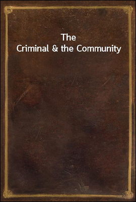 The Criminal & the Community